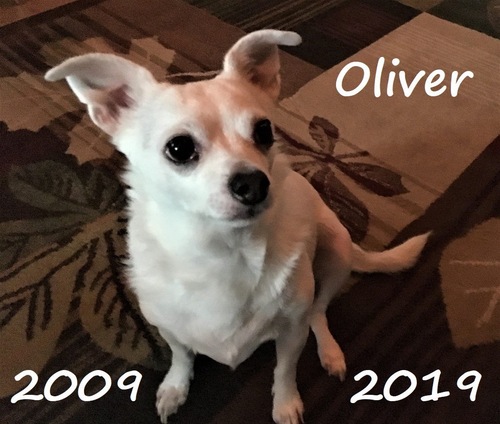 "Oliver ""Ollie"" Shively"